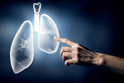 Redenen om te stoppen met roken