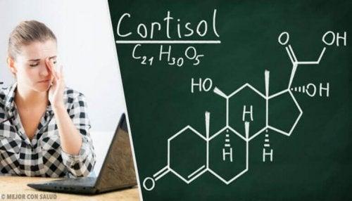 Een hoog cortisolniveau verlagen met natuurlijke remedies