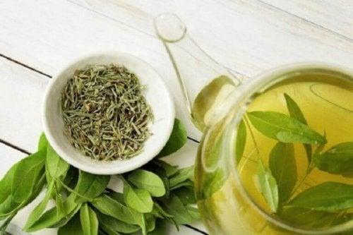 Een gevoelige hoofdhuid verlichten met groene thee