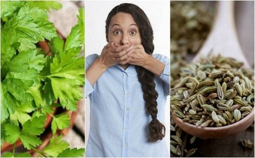 5 natuurlijke remedies tegen gastro-intestinale halitose