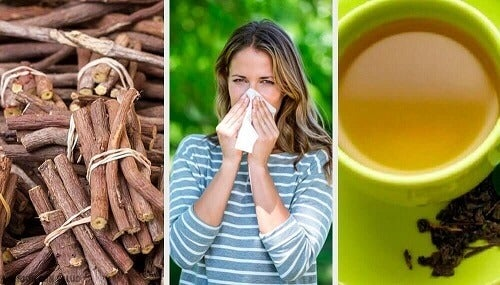 De behandeling van rinitis met 4 natuurlijke remedies