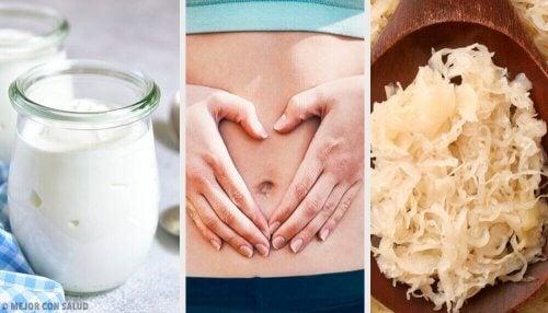 Een gezonde darmflora dankzij probiotische voedingsmiddelen