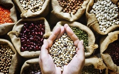 Een gezonde darmflora door meer volkoren granen te eten