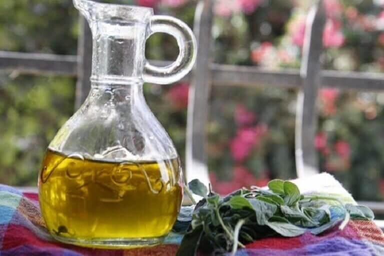 Oregano en fles olijfolie