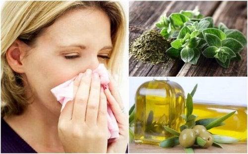 Bescherm je luchtwegen met oregano en olijfolie
