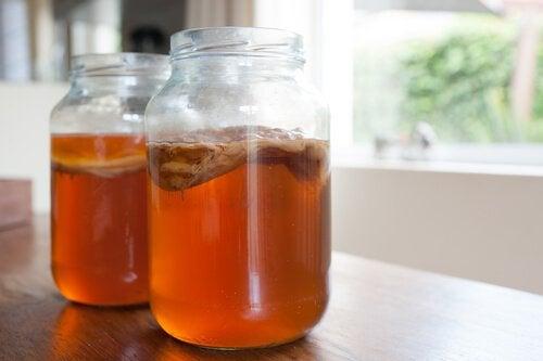 Kombucha-thee