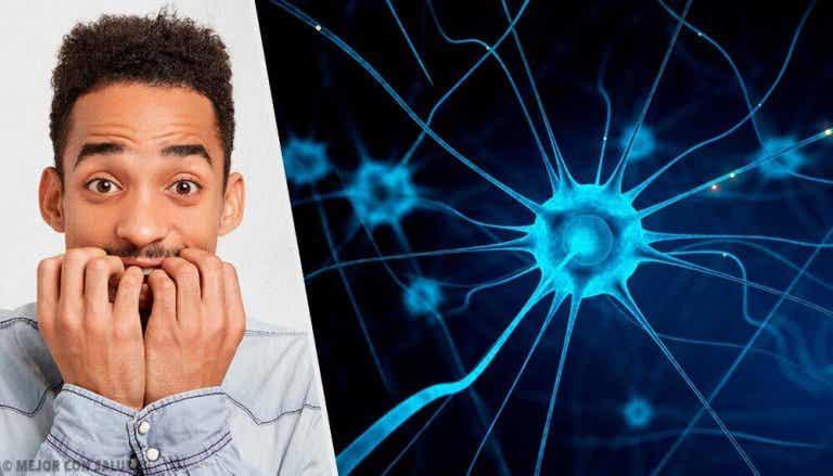 5 trucs om je zenuwen te kalmeren