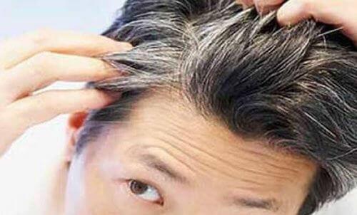 Geconcentreerde remedie van rozemarijn tegen grijze haren