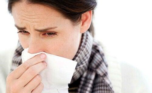 Geneeskrachtige planten die helpen bij verkoudheden