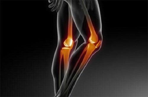 Start de preventie van osteoporose zo snel mogelijk