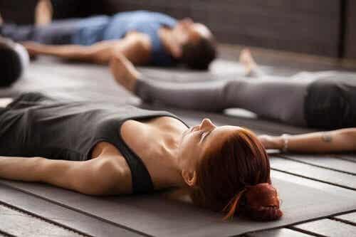 Yoga voor beginners: maak kennis met 5 basishoudingen
