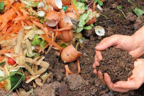 5 manieren om natuurlijke compost te maken