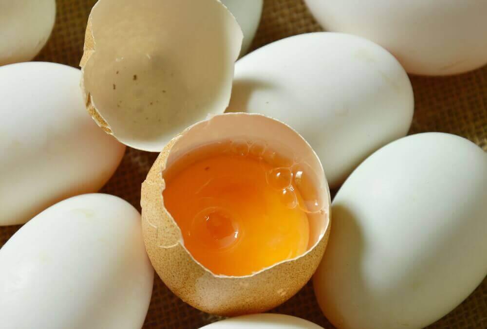 eierschaal met dooier