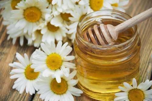 kamille bloemen en pot honing