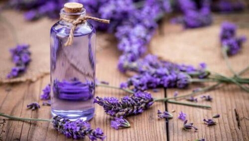 lavendel en flesje lavendelolie