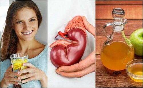 Een eind maken aan nierstenen met deze 6 tips