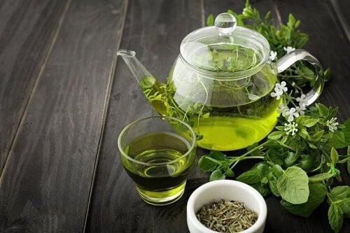 Groene thee is een gezond drankje voor de huid