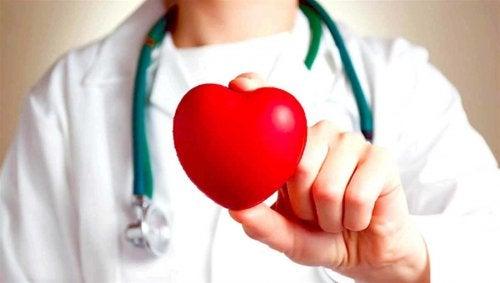 Knoflook is goed voor je hart