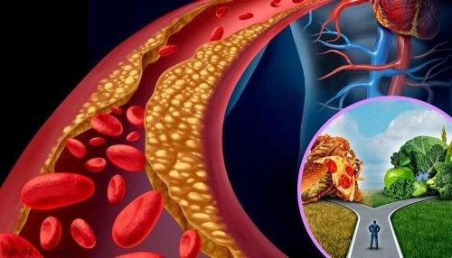 Goede cholesterolwaarden