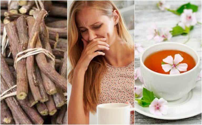 4 natuurlijke remedies tegen oesophagitis