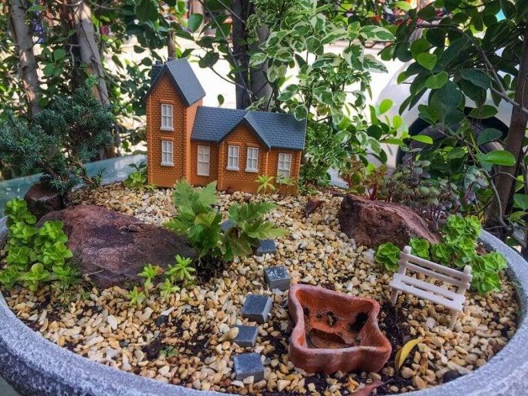 6 briljante ideeën voor een minituin