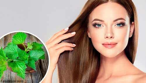 De voordelen van brandnetel voor je haar