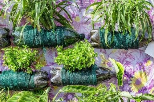 Plastic flessen met decoratie en planten