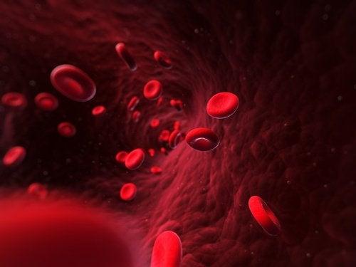 Bloedstroom