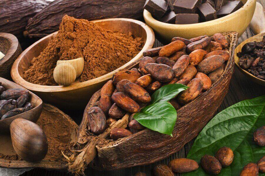 de krachtige antioxidanten in cacao