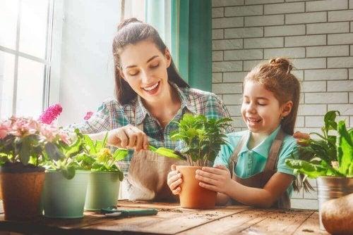 Kamerplanten die je gezonder zullen maken