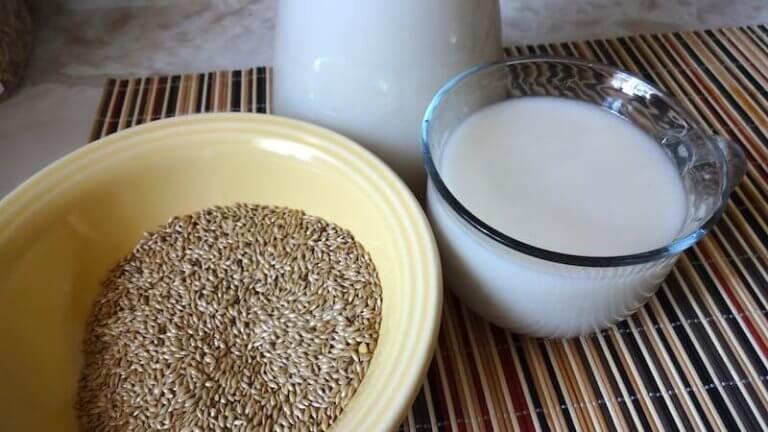 vogelzaad en plantaardige melk