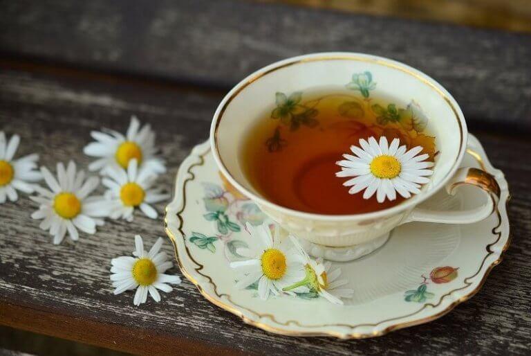 Gebruik van medicinale planten bij menstruatieklachten