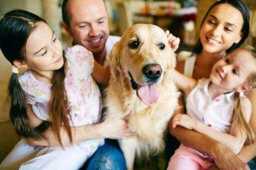 De voordelen van een huisdier in de familie
