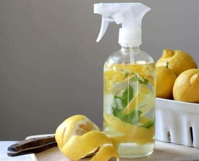 Spuitfles met citrusvruchten