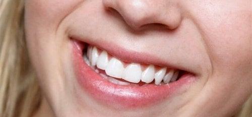 Aloëvera is geweldig voor de gezondheid van de tanden