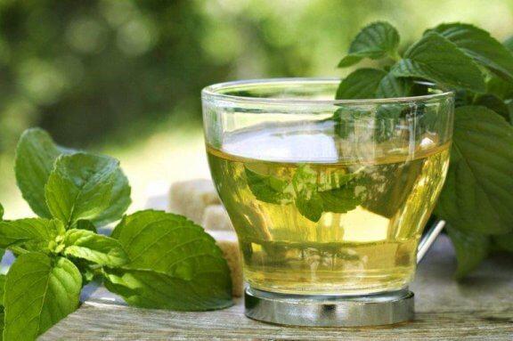 Groene thee met munt