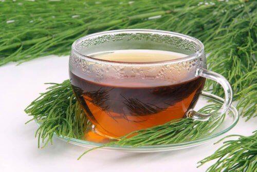 Infusie van paardenstaart en groene thee