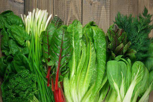 verschillende soorten groende bladgroente