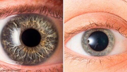 Kijk naar de pupillen om te zien of iemand tegen je liegt