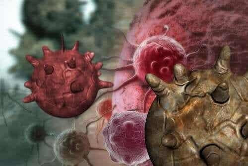 Mythes over voedingsmiddelen die kanker verwekken