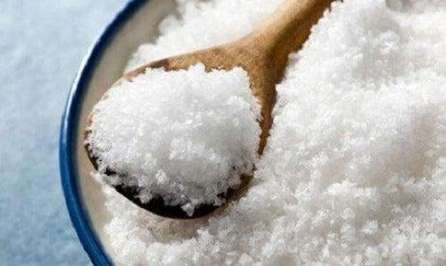 Gejodeerd zout
