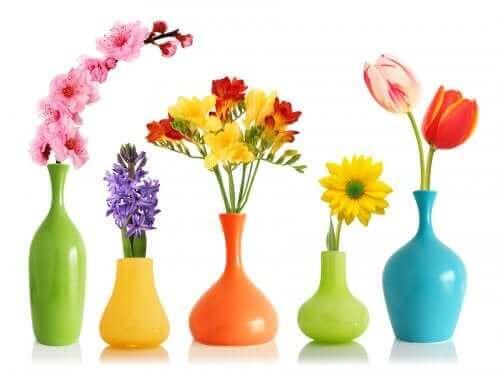 Decoratieve vazen