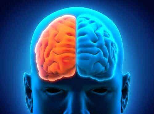 Een hemisferectomie en de postoperatieve periode