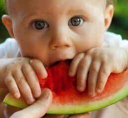 Het dieet van je kind: 6 voedingsmiddelen die je op moet nemen
