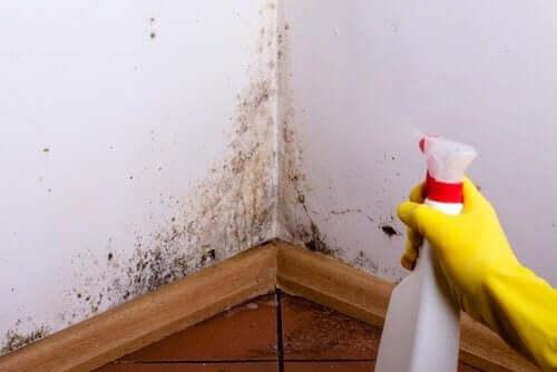 4 trucs voor het verwijderen van vlekken op de muur