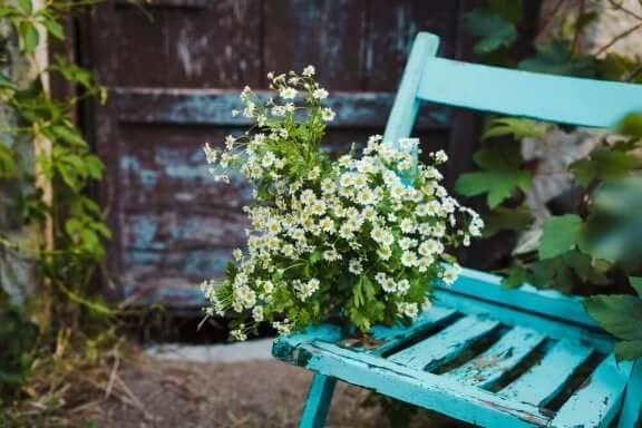 Oude stoel met bloemen