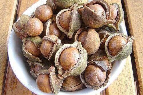 macadamia's zijn een van de minder bekende notensoorten