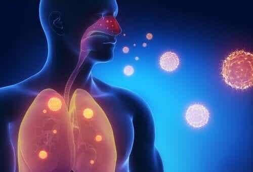 Drie infusies om de symptomen van griep te verlichten