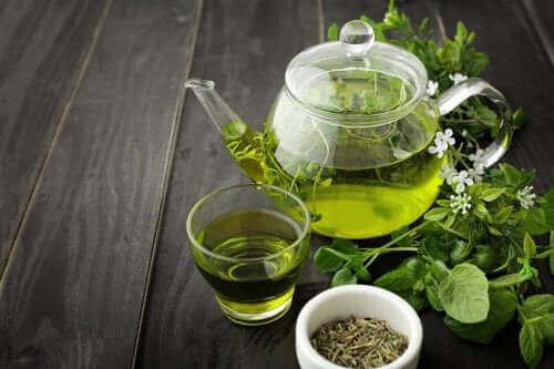 Groene thee om de bloedcirculatie te verbeteren