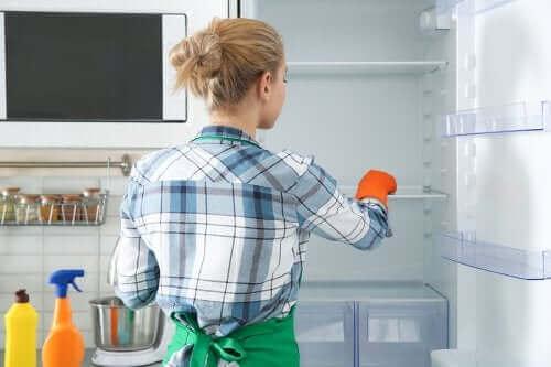 Milieuvriendelijke methoden om de koelkast te reinigen